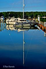 kuvajainen_2 (Paivi Hannele) Tags: blue sea reflection nature animals finland landscape boat meri naantali canonphoto thisisfinland visitfinland ourfinland