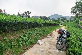 thai nguyen - vietnam 2