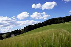Wolkenstimmung über dem Mühlviertel (rubrafoto) Tags: sommer wolken landschaft wetter stimmung mühlviertel ottensheim wolkenstimmung ooe witterung wolkenhimmel grünland wetterbild sommerlandschaft
