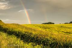 DSC08462 (davyskin46) Tags: sony slt a57 sonydt1650f28ssm rainbow