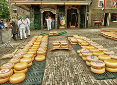 Kaeskoppenstad 2016, Alkmaar 10 (Meino NL) Tags: holland netherlands alkmaar noordholland kaasmarkt waagplein northholland waaggebouw beemsterkaas kaeskoppenstad kaeskoppen kaeskoppenstad2016