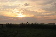 Früh am Morgen in Bergenhusen, Stapelholm (21) (Chironius) Tags: stapelholm bergenhusen schleswigholstein deutschland germany allemagne alemania germania германия niemcy himmel sky ciel cielo hemel небо gökyüzü morgendämmerung sonnenaufgang morgengrauen утро morgen morning dawn sunrise matin aube mattina alba ochtend dageraad zonsopgang рассвет восходсолнца amanecer morgens dämmerung wolken clouds wolke nube nuvole nuage облака