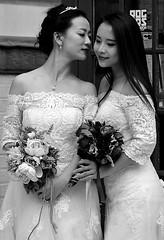 Bridal Duet (pjpink) Tags: uk wedding england blackandwhite bw white london monochrome spring dress britain lace may parliamentsquare brides lacy 2016 pjpink