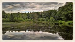 Auch dunkle Wolken haben ihren Reiz / Even dark clouds have their charm (r.stopable1) Tags: wolken spiegelungen reflections himmel sky gewsser frame rahmen landschaft landscape natur nature niedersachsen lowersaxony eschede sdheide cellerland
