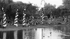Phoenix 4th of July 2016 8176.jpg (Matthew R photography) Tags: people holiday phoenix candid az 4thofjuly independenceday 2016 steeleindianschoolpark