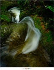 Highway (nandOOnline) Tags: water beek ardennen natuur nat m bos landschap waterval rivier ninglinspo bergrivier stroomversnelling bergbeek