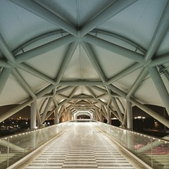 Structurally tough! I'm not a Civil Engineer but I can say that this overpass walk way is really, really strong. Steel trusses makes is nicier and beatiful. #civilengineering #photography #artofwaiting #artworkph #5nong (Quidlat) Tags: photography civilengineering artofwaiting artworkph 5nong
