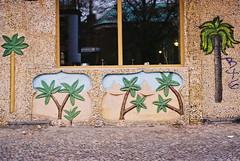 berlin (Katarina Sulajova) Tags: berlin analog 35mm kreuzberg germany palms restaurant
