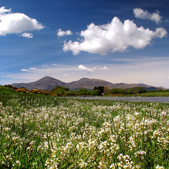 The Mournes in May.. (DaveMurdoch...Need processing help!!!) Tags: ni dpp dundrum codown themournes hitechfilter canong12