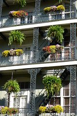 Balcony (~BJG~) Tags: city flowers vacation kids louisiana neworleans frenchquarter porches 2ndlevel dsc4336