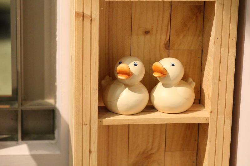 Ducky017.JPG