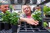 Time for gardening (BrianEden) Tags: flowers woman plants newyork man shopping fuji unitedstates farmersmarket manhattan candid streetphotography worried fujifilm greenmarket unionsquare x100s