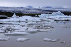 IMG_3257 (Glassholic) Tags: ice iceland july glacier iceberg juillet glace islande ovs 2013 fjallsrln kvisker