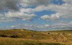 Plateau du Larzac (Michel Seguret thanks you all for + 7.700.000 view) Tags: summer sky france nature night nikon estate sheep cloudy shepherd plateau sommer natur himmel natura ciel cielo d200 t mouton millau larzac causse aveyron brebis midipyrnes causses troupeau michelseguret