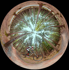 Leo Kast 02 (Dunkelbild) Tags: bike sport bad mountainbike drop downhill dirt trail northshore mtb xc freeride bikepark enduro meisterschaft singletrail wildbad