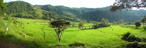 Kelimutu foothills