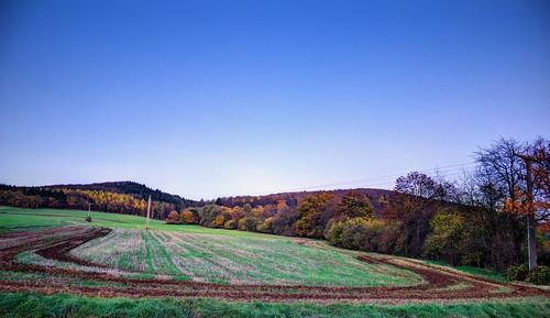 Ein herbstliches Feld
