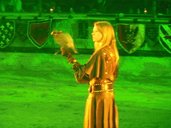 Lady Falconer (QAGUY) Tags: medieval knights