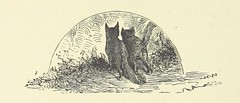 Image taken from page 172 of 'Woodland Romances; or, Fables and Fancies'
