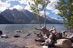Grand Teton National Park (arthurpolly) Tags: usa holiday beach nature beautiful canon landscape eos nationalpark lakes elements grandteton naturesfinest liesure 50d flydrive flickrdiamond flickrlovers dragondaggeraward