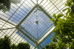 "Buffalo and Erie County Botanic Garden Panana Forest roof • <a style=""font-size:0.8em;"" href=""http://www.flickr.com/photos/59137086@N08/12039589326/"" target=""_blank"">View on Flickr</a>"