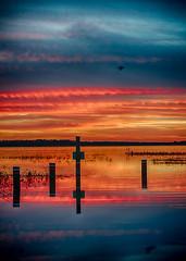 Sunset.jpg (markapino) Tags: county sunset florida osceola twinoaks laketoho vision:sunset=0939 vision:outdoor=099 vision:sky=0976 vision:car=0521 vision:clouds=092