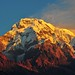 The Burning Dhaulagiri
