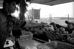 Scan-140224-0001.jpg (mathendrix) Tags: africa analog harbor blackwhite marrakech nikonf3 essaouira auswahl marroco fujineopan400 roll5 homedeveloping 2013 nikoncoolscan5000ed