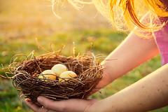 Delicate (megscapturedtreasures) Tags: bird nest eggs delicate fragile cpmg0214sa