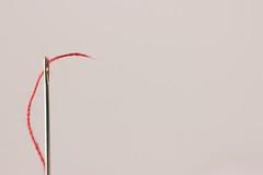 Macromondays - Negative space (Nieri Da Silva) Tags: red white macro blanco apple metal closeup mxico canon mexico rouge casa rojo aperture mexicocity df edited negativespace athome ef50mmf18ii objeto distritofederal editada selectivefocus extensiontubes primelens niftyfifty macromondays mexico vsco macrophotographers fixedfocuslens eost3i vscofilm editadaconaperture editedinapplesaperture nieridasilva