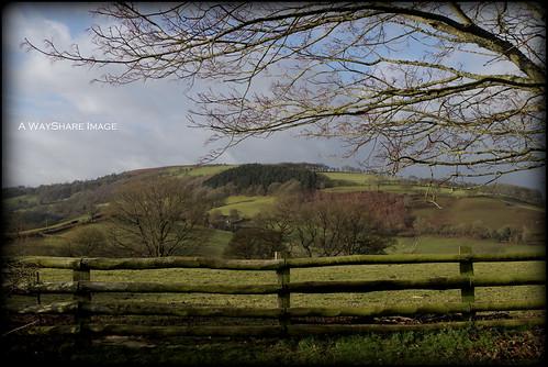 Powys countryside