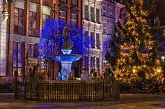 Lights for Patii (Smo_Q) Tags: longexposure night poland polska polen gdansk polonia gdask bluemood    fontannaneptuna  pentaxk5