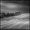 Algo de nieve (muliterno) Tags: byn campos losroyos