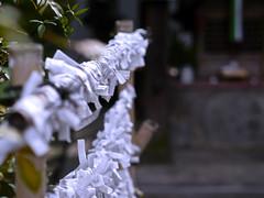 (aozora.umikaze) Tags: japan nara genki aozora ashita minnaminna