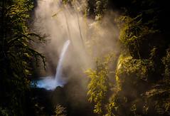 Mirkwood Beckons (fotostevia) Tags: river waterfall columbiarivergorge eaglecreek eaglecreektrail metlakofalls pentaxart sigma1770mmf284dcmacrohsmcontemporary