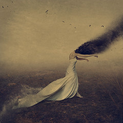 the shadows we follow (brookeshaden) Tags: selfportrait birds fog desert concept pulling goodvsevil whimsical fineartphotography darkart surrealart rightvswrong lightvsdark conceptualphotography fairytaleart brookeshaden whitebedsheet