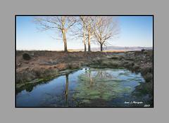 ALFAMBRA.-Reflejo en la  Charca (Juan J. Marqués) Tags: verde luz azul rustico agua atardeceres reflejos alfambra