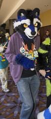 _DSC0651 (Acrufox) Tags: midwest furfest 2015 furry convention december hyatt regency ohare rosemont chicago illinois acrufox fursuit fursuiting mff2015