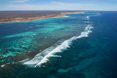 WA Coral Bay - Coastline - 3103