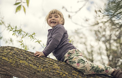 w i top (Anders Hviid) Tags: tree climb sweden wendy sterlen klatre