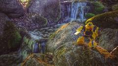 H2O (thenatureboywoo) Tags: sunlight water waterfall moss rocks bumblebee animated activators