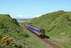 156 466, Nethertown, 23 May 2016 (Mr Joseph Bloggs) Tags: railroad train coast diesel railway trains cumbria lancaster multiple northern bahn carlisle treno 156 unit sprinter 466 sellafield dmu cumbrian nethertown 156466 2c37
