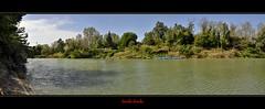 The green river (Jambo Jambo) Tags: italy panorama river landscape italia fiume canoe canoes tuscany toscana grosseto maremma labarca alberese ombrone maremmatoscana parcoregionaledellamaremma fiumeombrone nikond5000 jambojambo maremmacountryside parcodelfiumeombrone