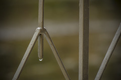 caer (ands91) Tags: winter water rain gua metal fence reja lluvia agua bokeh guatemala chuva pluie invierno cerca acqua inverno pioggia fuoco mtal selectivefocus lhiver clture leau metallo recinzione focoseletivo enfoqueselectivo miseaupointslective