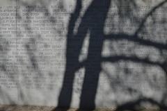 Memorial/Minnesmärke [In Explore 2016-05-09] (annesjoberg) Tags: monument memorial estonia shadows struktur structure skuggor explored inexplore estoniamonumentet minnesplats fotosondag fotosöndag fs160508
