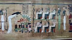 Papyrus - Cairo Museum (Amberinsea Photography) Tags: egypt cairo papyrus ancientegypt cairomuseum amberinseaphotography