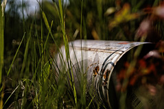 ([gegendasgrau]) Tags: urban color detail green art nature grass graffiti weed rust mood moody bokeh natur atmosphere spray vandalism gras grn rost farbe dortmund spraycan lack ambiance 2016 sprhdose atmo sprhlack