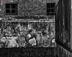 So many people overlook and are ignored without them know its essence , as well as white pencil, forgotten and abandoned by many. (miguel.santos.1029) Tags: windows urban blackandwhite bw abandoned wall blackwhite streetphotography streetphoto walls pretoebranco bnw parede bwphotography janelas bwphoto blackandwhitephotography abandonado blackandwhitephoto abandonedplaces bwshots blackandwhiteshot blackandwhiteshots bwshot bwlovers blackandwhitelovers pretoebrancofotografia bnwsaomiguelazores