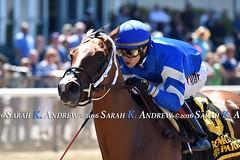 Medaglia dOro's Kareena trounces Jersey Girl rivals at Belmont (Rock and Racehorses) Tags: ny belmont kareena stakes jerseygirl medagliadoro