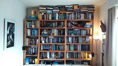 When people tell you that you have too many novels, they simply mean you need more bookshelves. Or is that the wrong interpretation? (Red Cathedral uses albums) Tags: bookshelf novels tintin kuifje bookshelves alien mask mali davidp whisky whiskey talisker highlandpark skull hellraiser puzzlebox zombies